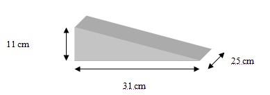 dimension rampe accès
